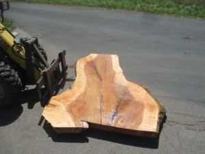 Kaufen Tischplatten nach Mass Esche R-00227