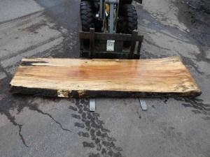 Holzplatten kaufen Buche O-00219