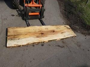 Holzplatten kaufen Buche O-00232