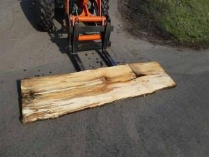 Holzplatten kaufen Buche O-00233