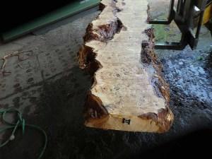 Holzplatten kaufen Pappel S-00101