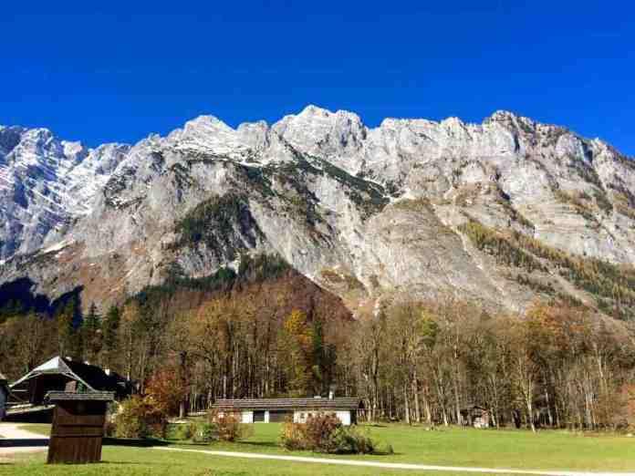 Alpensalz Alpenblick