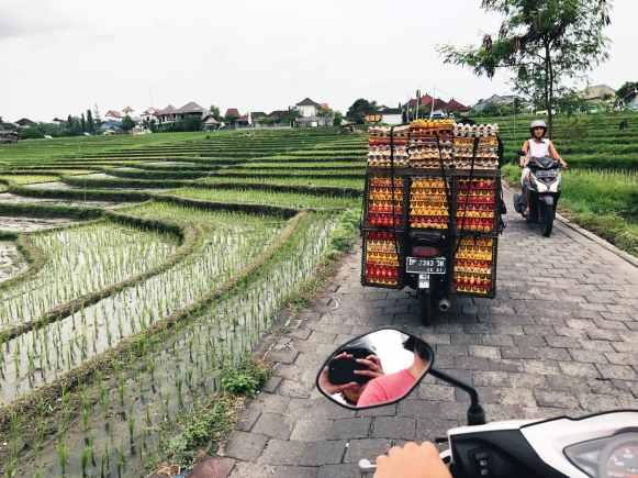 Bali - De Reizigers - 4