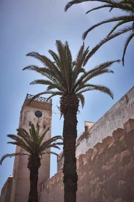 Marokko - De Reizigers - Road Trip -20
