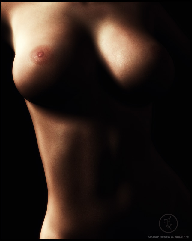 Digital Illustration Nude Femal Torso Front