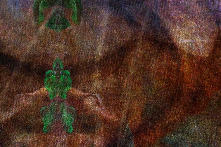 1:1 Closeup Detail - ©MMXVIII Derek R. Audette