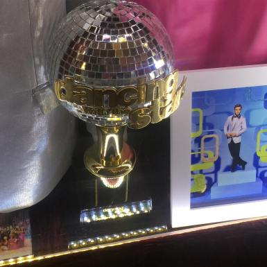 """@derekhough's and @bindisueirwin's mirror ball #movebeyond #moveliveontour #pinkshirtgirl #dwts"" Courtesy"