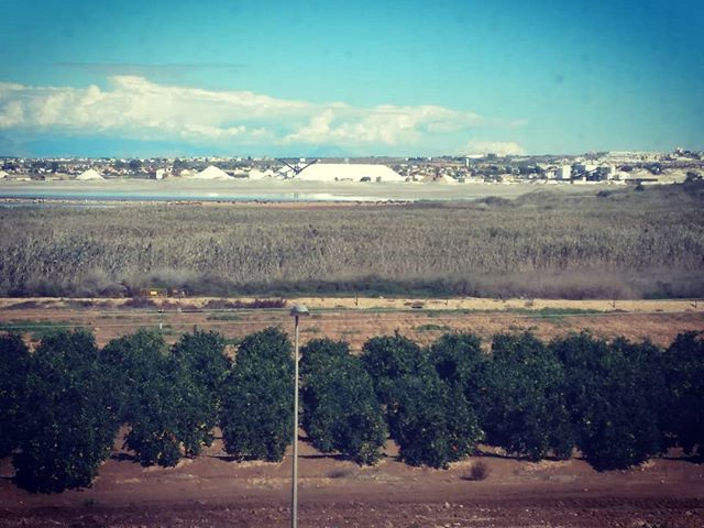 #autohash #Spain #ComunidadValenciana #landscape #agriculture #nature #tree #sky #travel #traveling #visiting #instatravel #instago #water #outdoors #farm #soil #scenic #field #sight #tourism #flora #sand #summer #desert #hill #saltlake #salines - from Instagram
