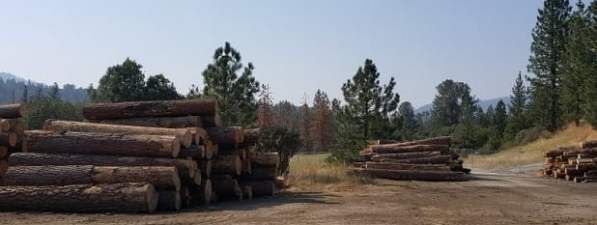 Log decks at North Fork mill site Biomass Plant.