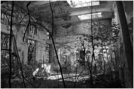 Ruinen 2 [© Helmut Dlapa, 2015]
