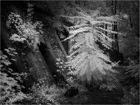 Ruinen 5 [© Thomas Steinbichler, 2015]
