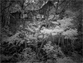 Ruinen 7 [© Thomas Steinbichler, 2015]