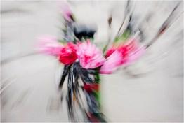 05_Fahrrad [© Peter Paulhart, 2013]