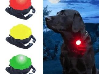 Scarab LED Leuchte