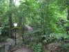 Tropical Island Manhattan Central Park