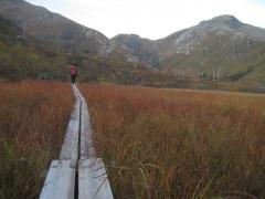 Holzplankenweg