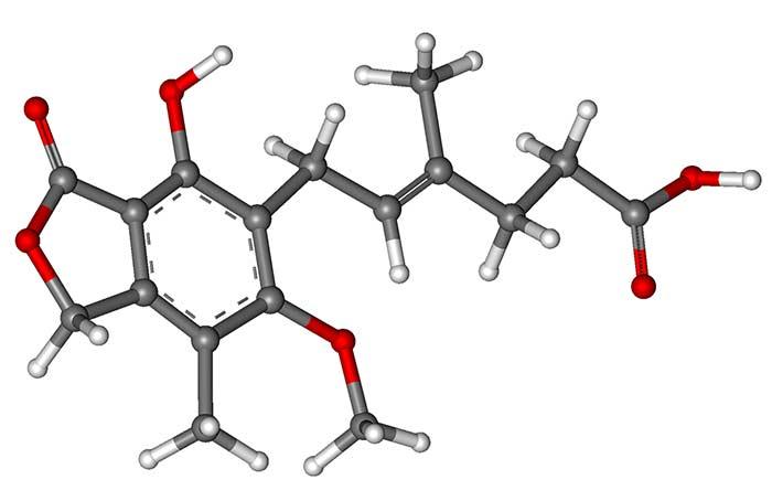 CellCept Ácido Micofenólico inmunosupresor