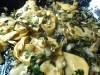 Kräuterseitlinge, Salatstrunke, Schalotten, Knoblauch, Petersilie mit Trotter Gear