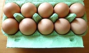 Frische Eier