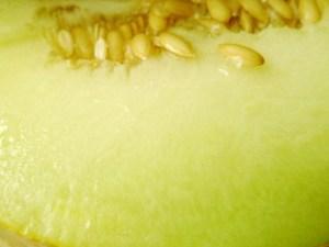 Ein Stück Netzmelone