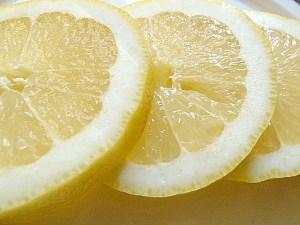 Große Zitronenscheiben