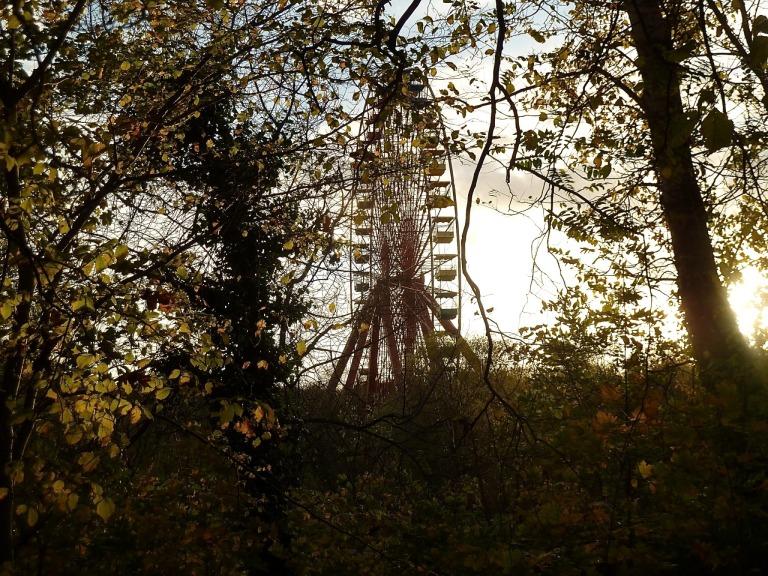 Das Riesenrad im Spreepark von Ferne