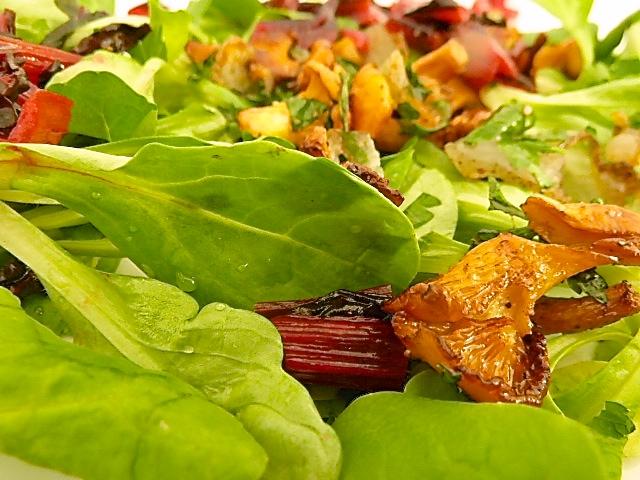 den Salat anrichten