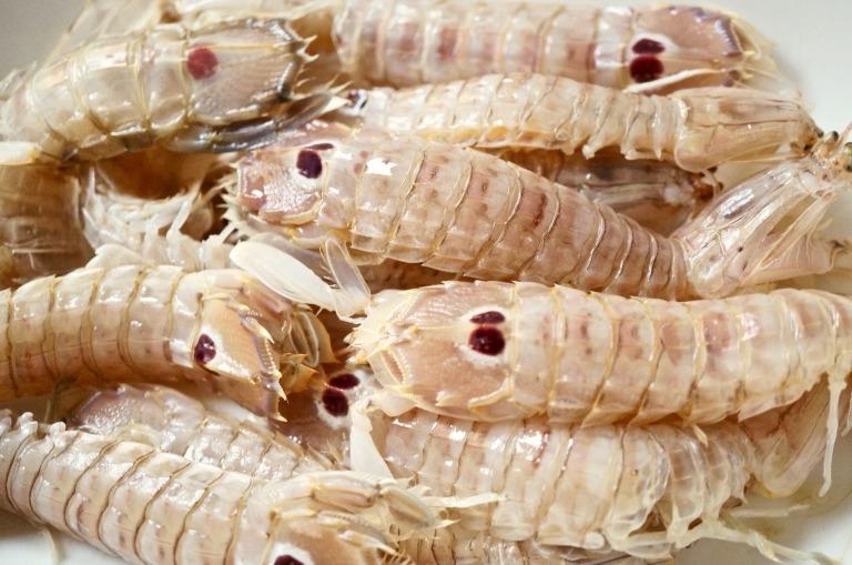 Heuschreckenkrebse