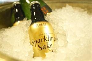 Gekkeikan Sparkling Sake, kyoto