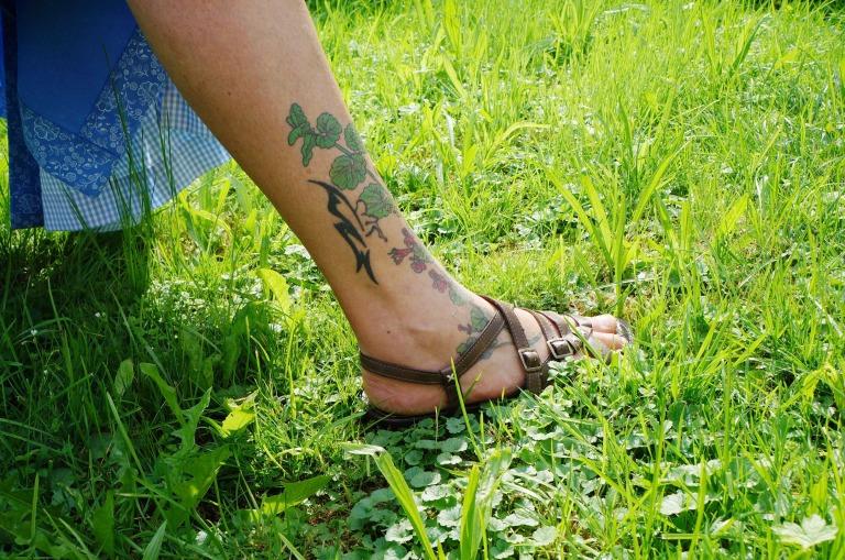 der Gundermann als Tattoo und auf der Wiese