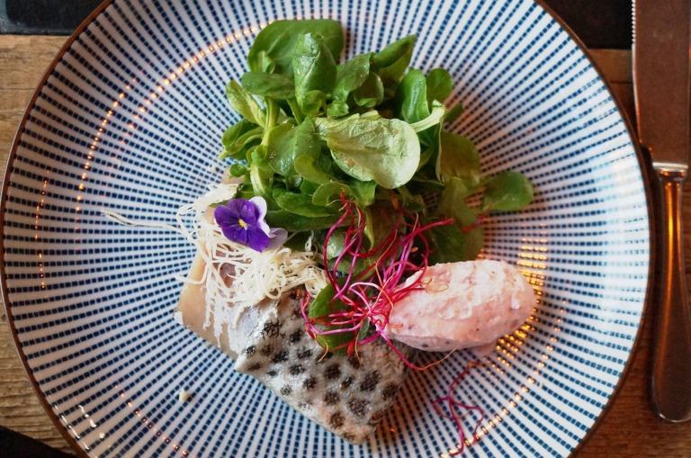 Vorspeise- Forelle, Salat und Preisselbeermousse