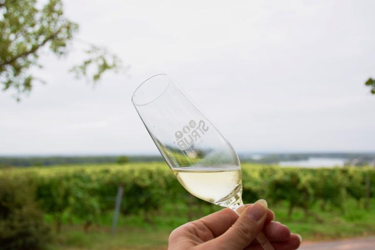 Rheinhessen geniessen mit Wein und Winzern