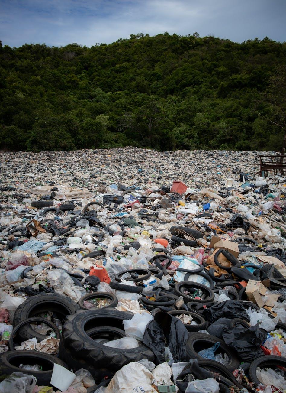 landfill near trees