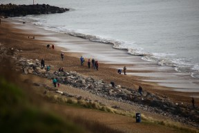Groups and dogs on beach 4