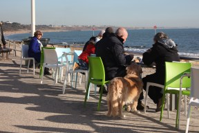 Diners and dog 1