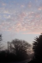 Dawn 3