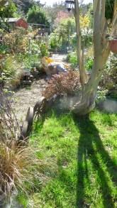 Aaron weeding path 1