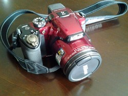 I use a Coolpix-510 for our great photos. Additional flash when needed.