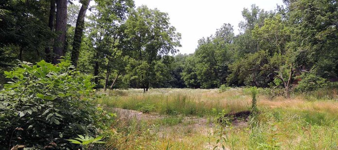 5 acres we sold just outside Danville