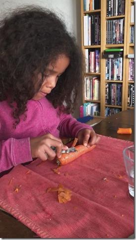 """Eviter de procrastiner et faire simple : mise en place de l'activité """"éplucher et râper des carottes"""""""