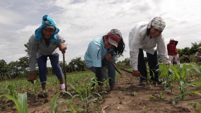 América Latina: reduz a pobreza no campo