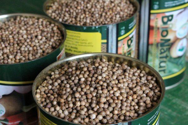 Sementes Agroecológicas Bionatur produzidas em assentamento da reforma agrária.