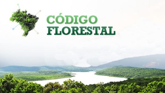 Código Florestal anistiou 41 milhões de hectares