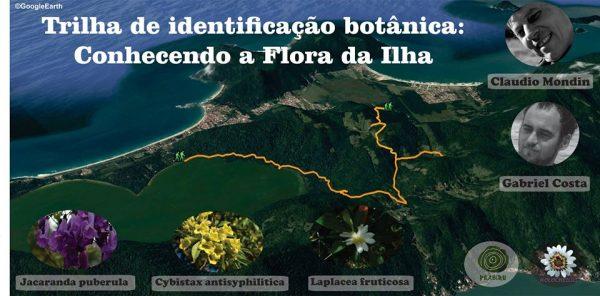 Trilha de Identificação Botânica – Conhecendo a Flora da Ilha