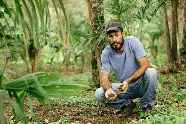 Agroecologia: MST recupera Mata Atlântica