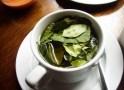 Desmistificando o chá de coca