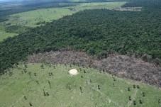 Imagens registradas por Juan Doblas mostram o avanço do desmatamento em áreas de vegetação nativa - Créditos: Foto: Juan Doblas