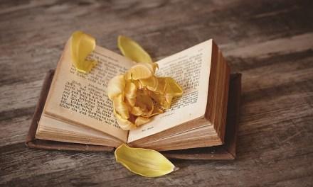 Entre libros… Una historia de amor