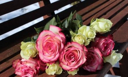 Flores el 14 de febrero