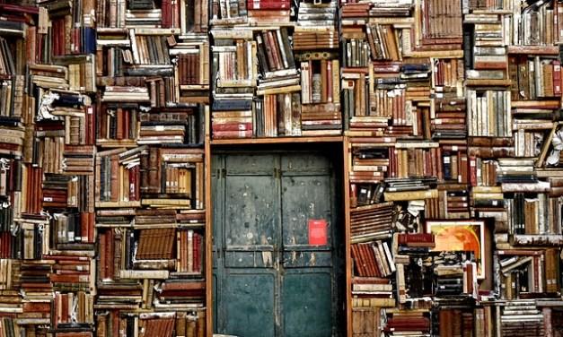En los estantes, de Javier Gilabert
